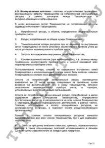 Устав ТСН Электрон стр.12