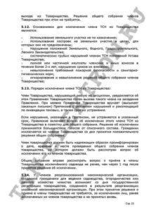 Устав ТСН Электрон стр.15